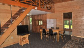 cabin 5 living room 3
