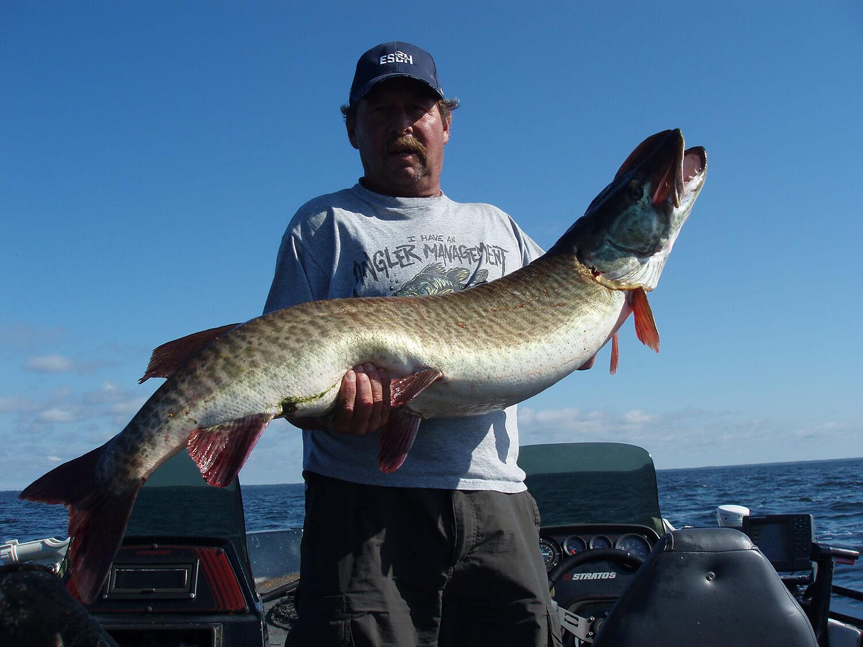 angler with huge musky